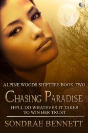 chasingparadise